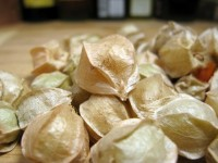 Unhusked Ground Cherries