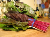 A Bunch of Swiss Chard