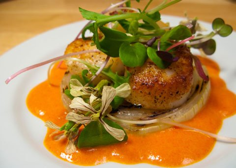 Seared Scallops with Sweet Onion, Red Pepper Coulis, and Arugula Flowers